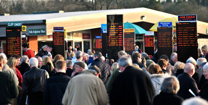 horse racing tipster